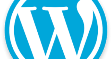 WordPress controllare link youtube
